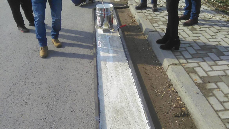 Оцртување на пешачки премини во сите населени места пред основните училишта во о.Могила