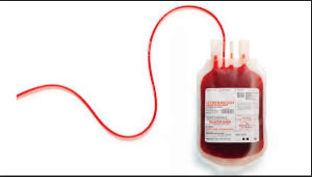 Голема крводарителска акција