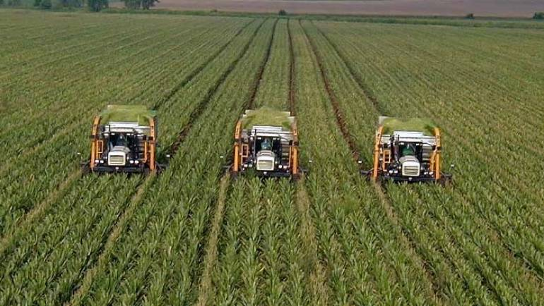 Земјоделците може да извадат дозвола за движење до 12.00 часот